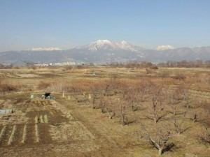 市内から見た飯縄山